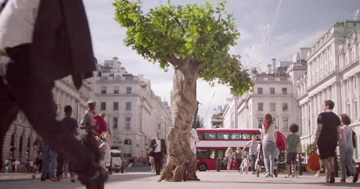 Unilever попрощались с лесом в социальной рекламе.