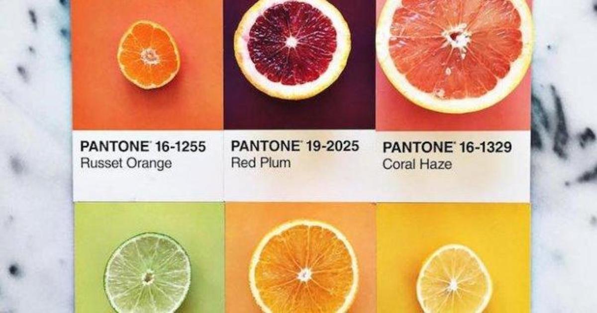 Вкусные Pantone от дизайнера Люси Литман.