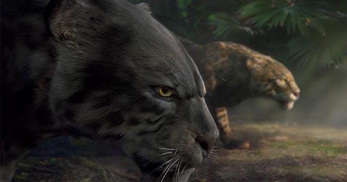 Спортсменов представили в виде диких животных в олимпийском ролике BBC.