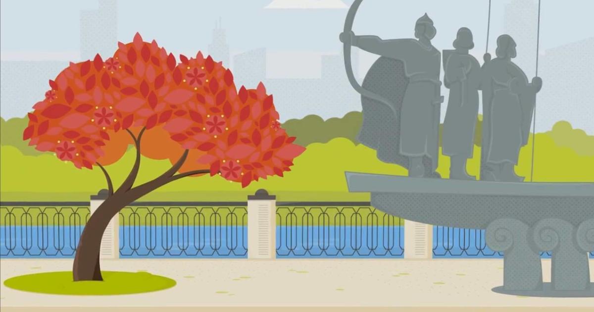 Украинцы теперь могут подарить дерево Киеву.