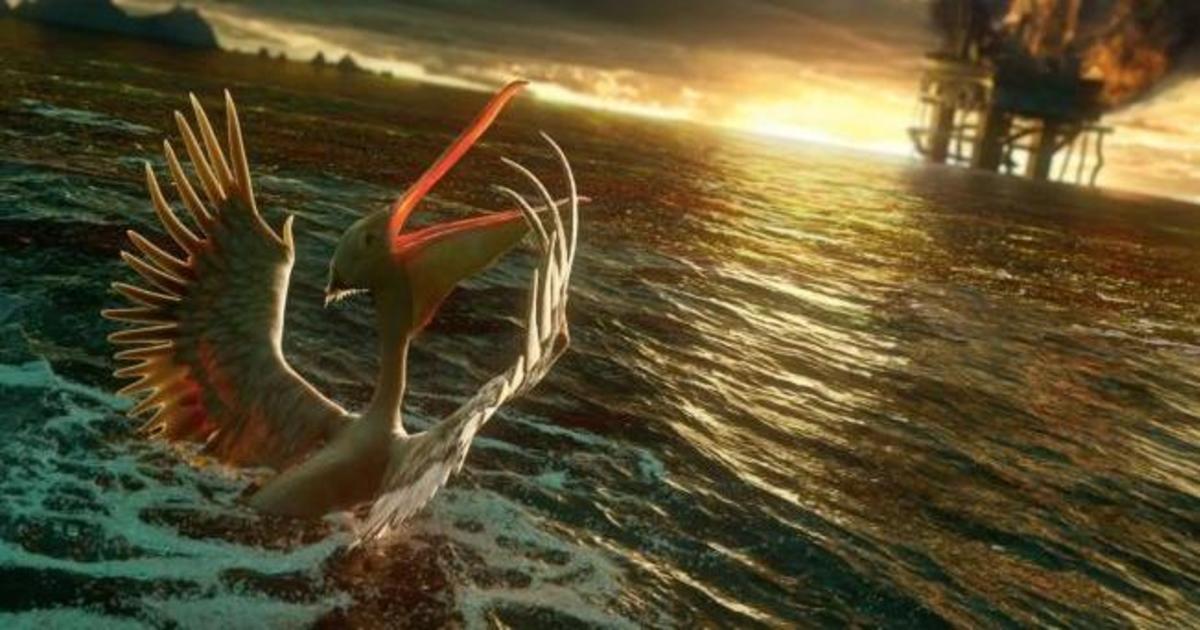 Великолепное stop-motion-видео напомнило об охране животного мира.