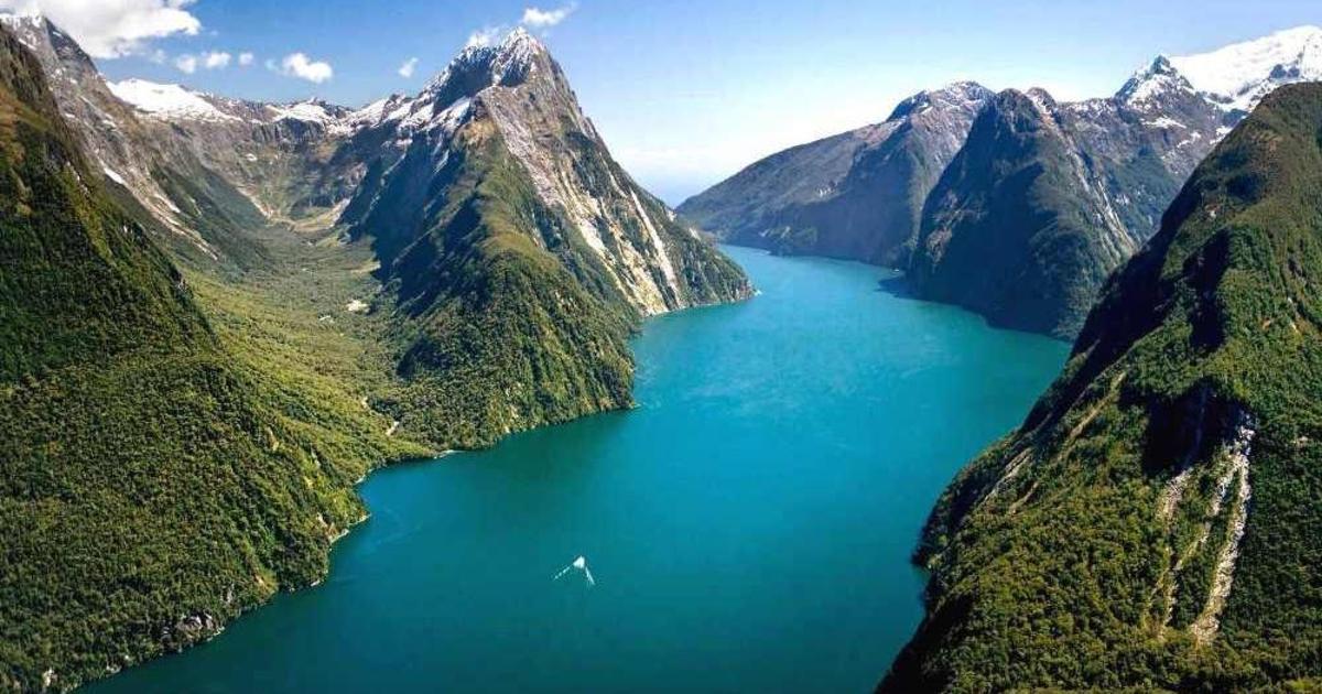 Новая Зеландия привлекает лучший талант, оплачивая поездку в страну.