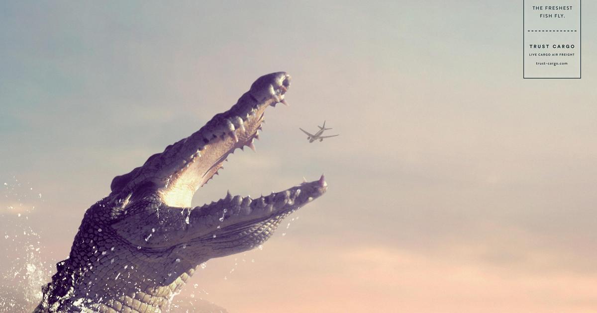 Свежайшая рыба летает в новой рекламной кампании.