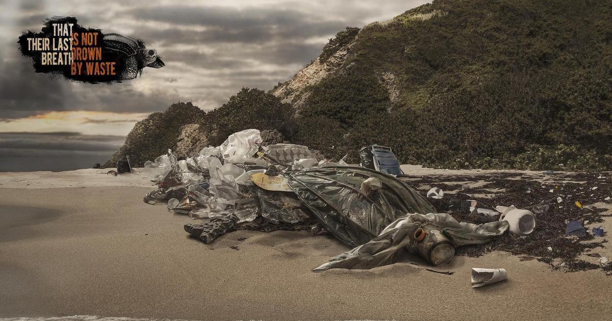 Рекламные принты создали животных из мусора.