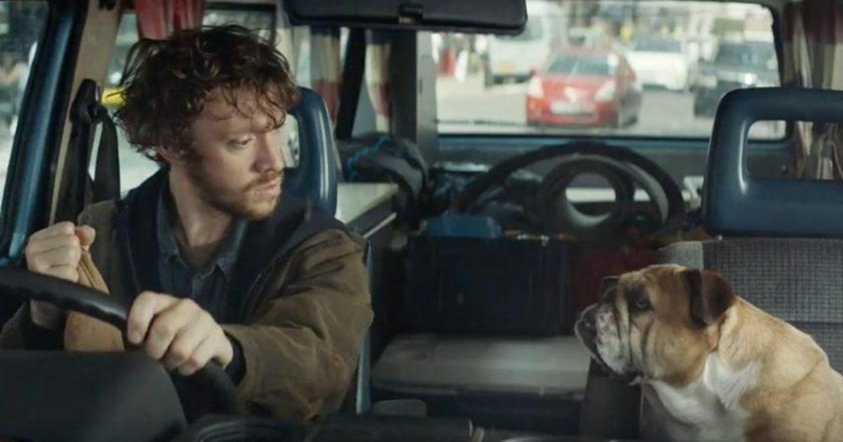Бульдог-телепат внезапно стал новым послом бренда Bulldog Skincare for Men.