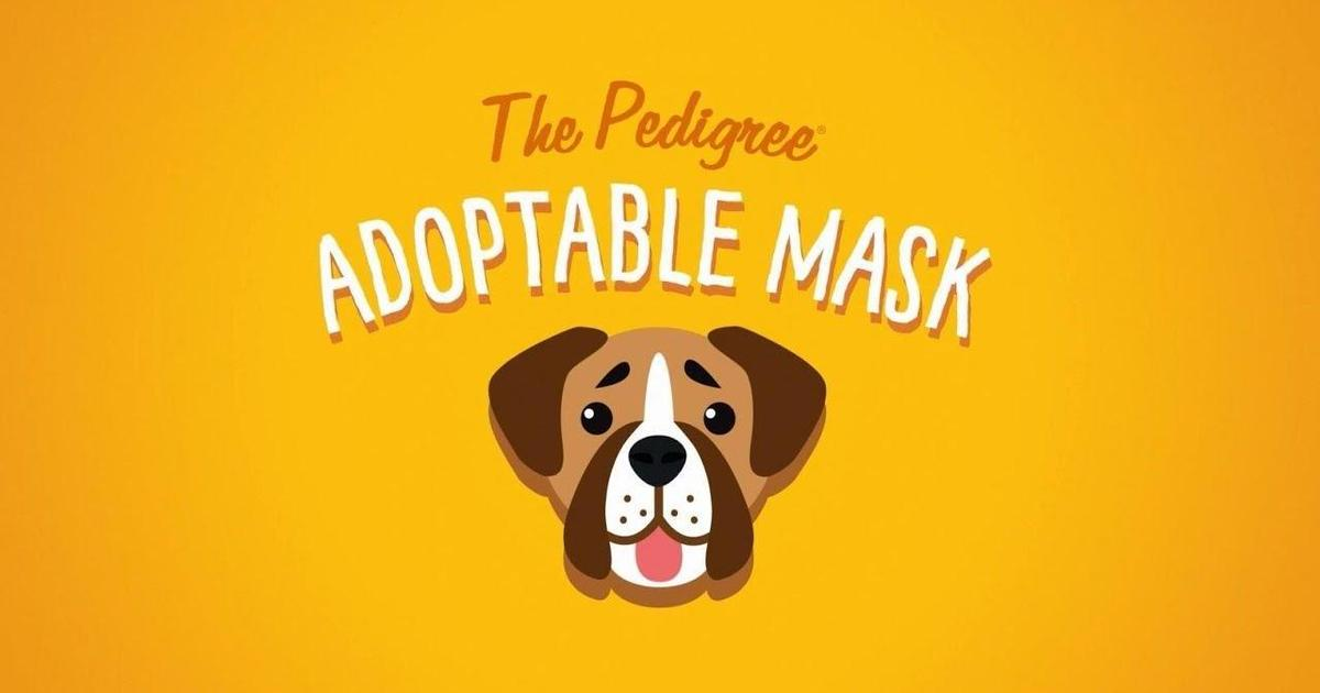 Pedigree создала селфи-маски, позволяющие приютить собаку.