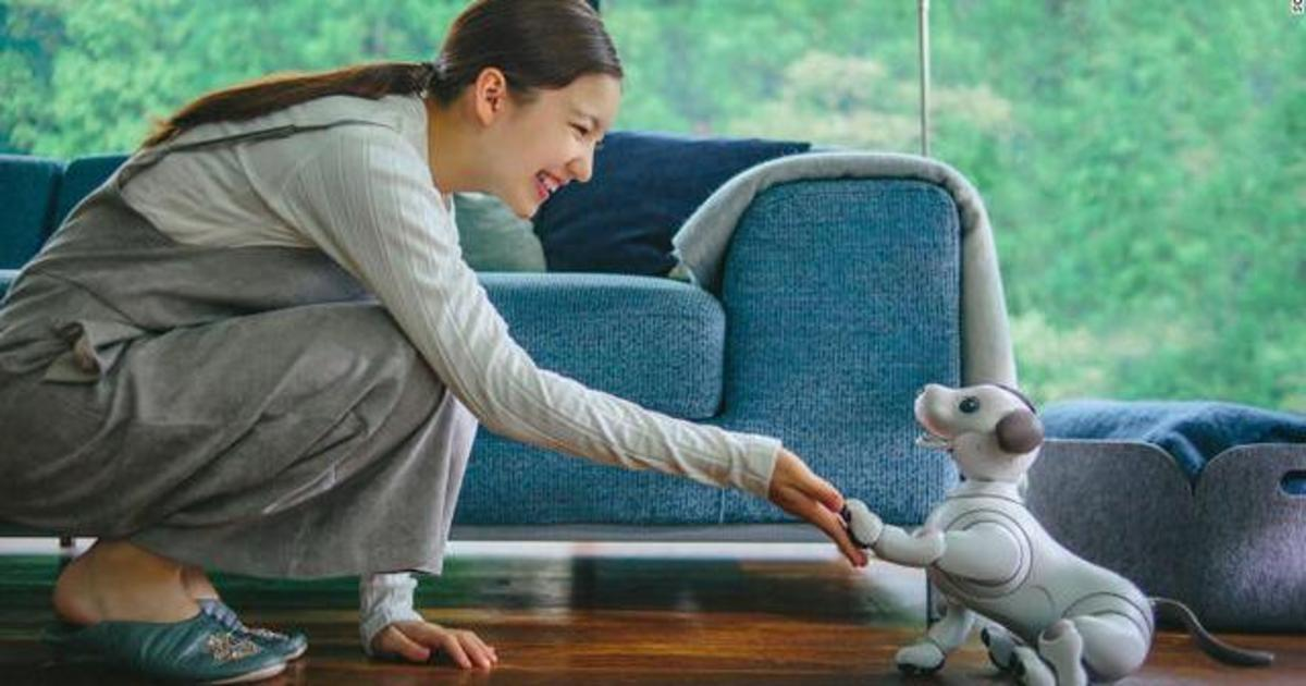 Прощай, Alexa: Sony превратила робота-собаку в AI-помощника.