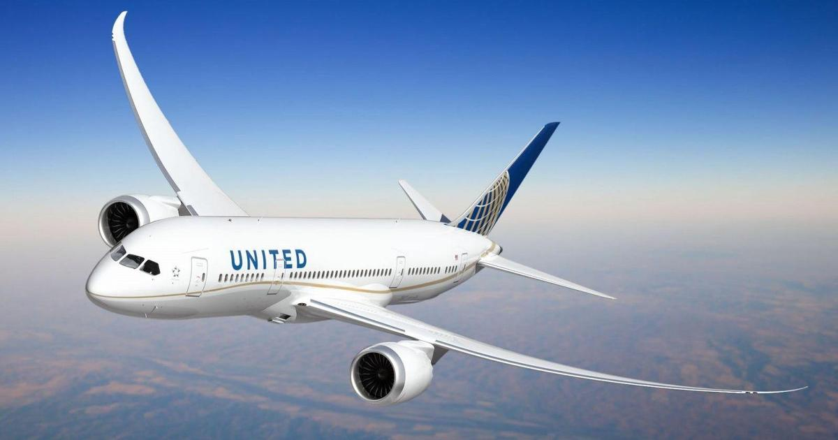 Репутация United Airlines вновь пострадала, на этот раз из-за смерти собаки