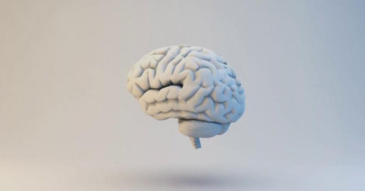 Droga5 сравнила туалетную бумагу с человеческим мозгом в новой кампании.