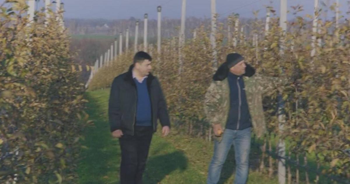 Syngenta призвала украинских фермеров объединиться.