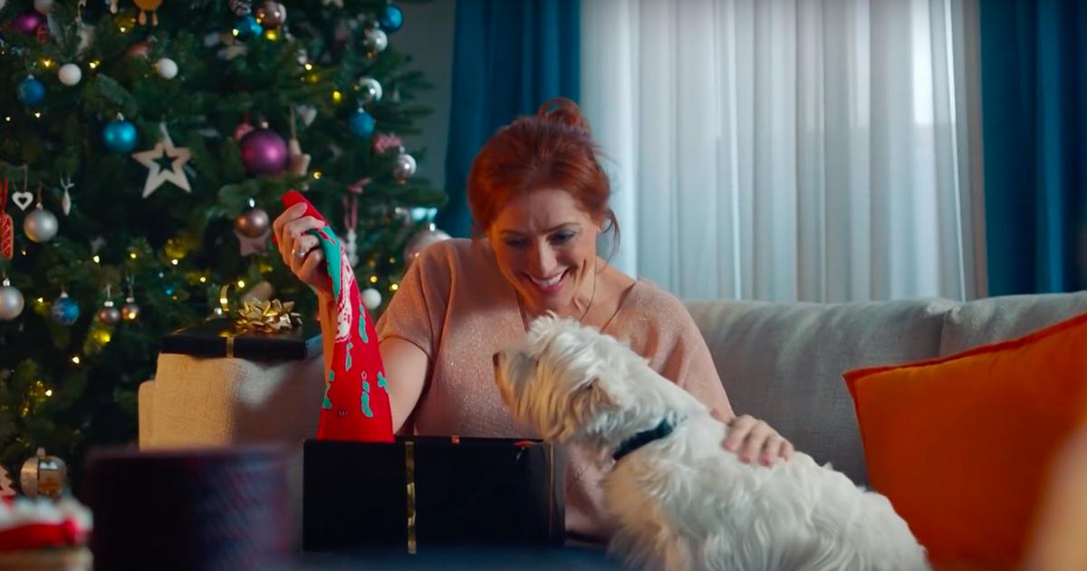 Собаки создали для себя и своих людей рождественские свитеры.