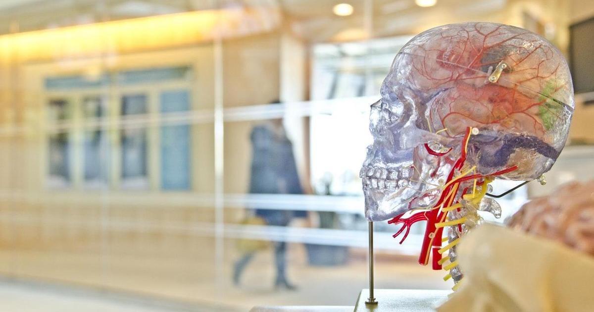 BrainShopper 2018: ТОП-5 инсайтов с конференции по нейромаркетингу