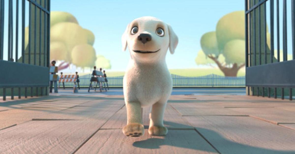 Фильм о собаке-поводыре для Southeastern Guide Dogs стал вирусным.