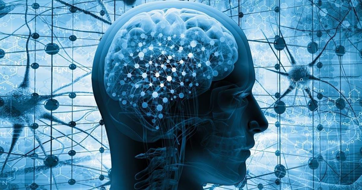 Нейромаркетингом по медиаканалам: сильные и слабые стороны ТВ, диджитала и прессы
