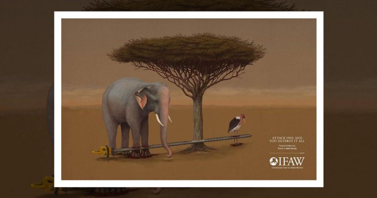 Печатная кампания напомнила о важности сохранения биоразнообразия.