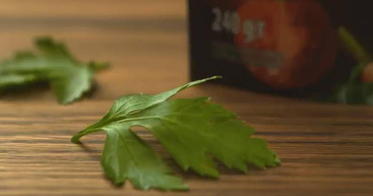 «Торчин» вдохновляет готовить без границ с заправками и маринадами.