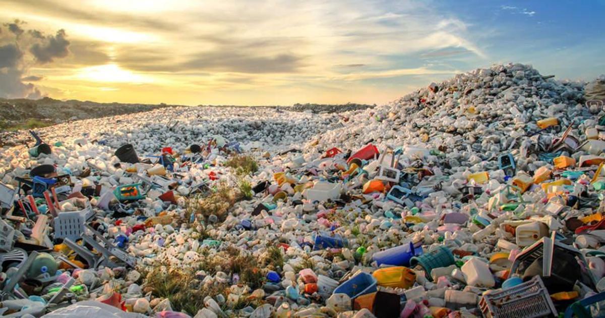 Украинская организация запустила чат-бот, который поможет отсортировать мусор.
