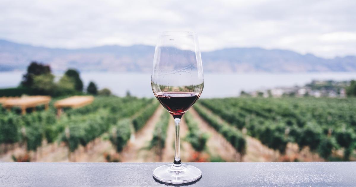 Винзавод показал, как вино сочетается с нытьем.