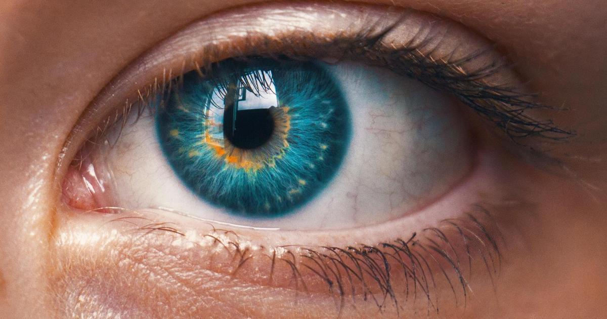 «Люксоптика» проверит зрение украинским маркетологам