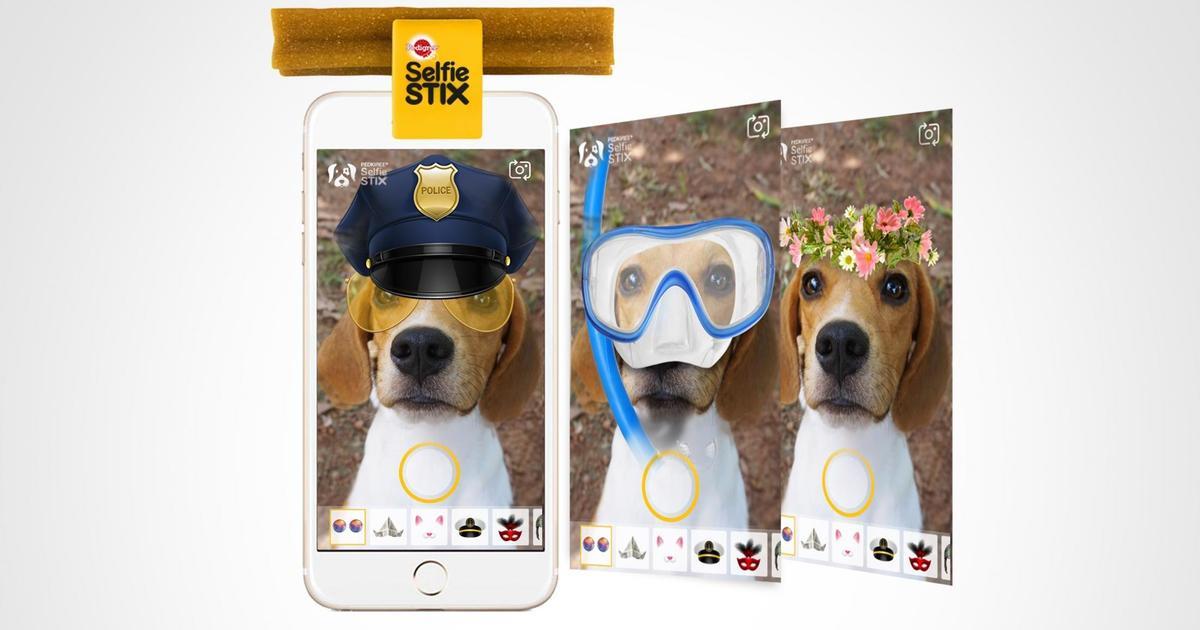 Pedigree выпустил фотоприложение для собак