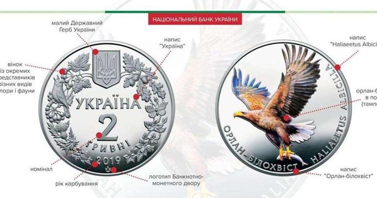 НБУ обвинили в незаконном использовании фотографии орла