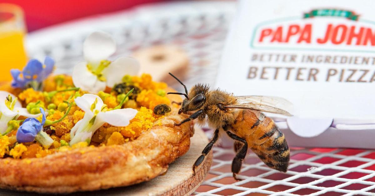 Сеть пиццерий Papa John's создала крошечную пиццу для пчел