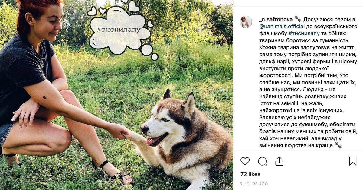#тиснилапу: NEBO и Uanimals запустили флешмоб в защиту животных