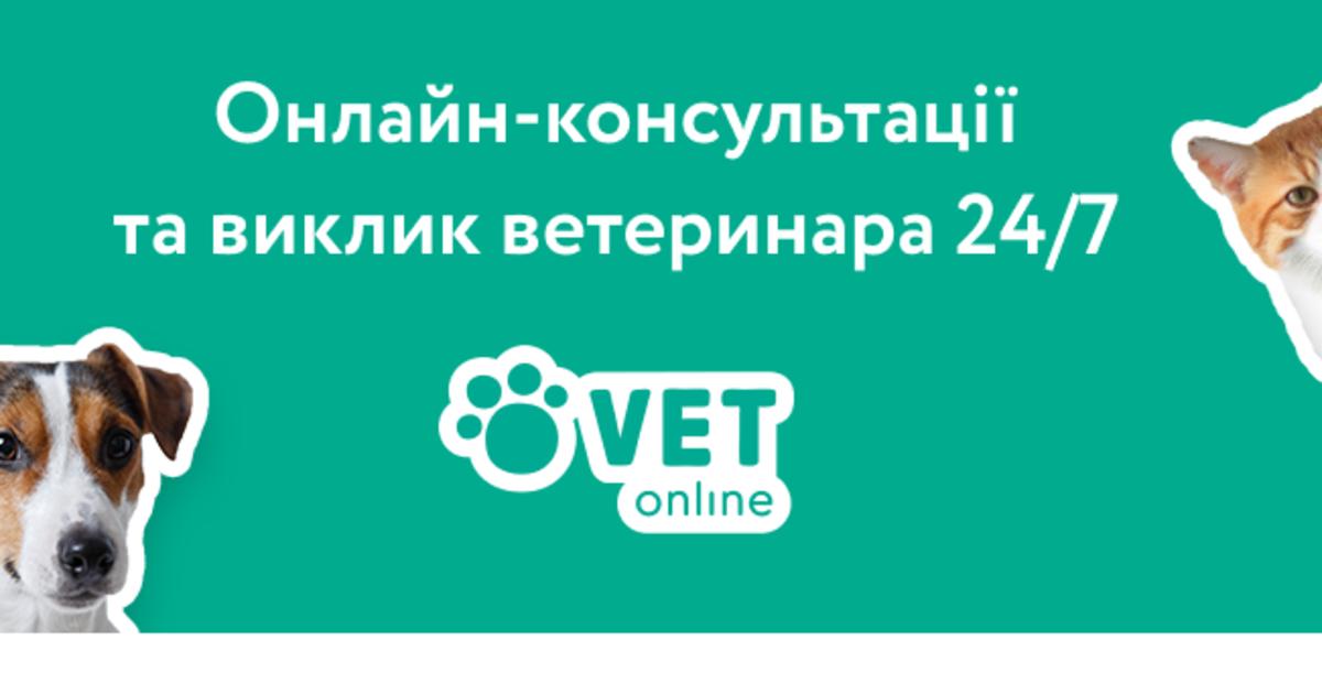 Українці запустили cервіс онлайн-консультацій та виклику ветеринара 24/7