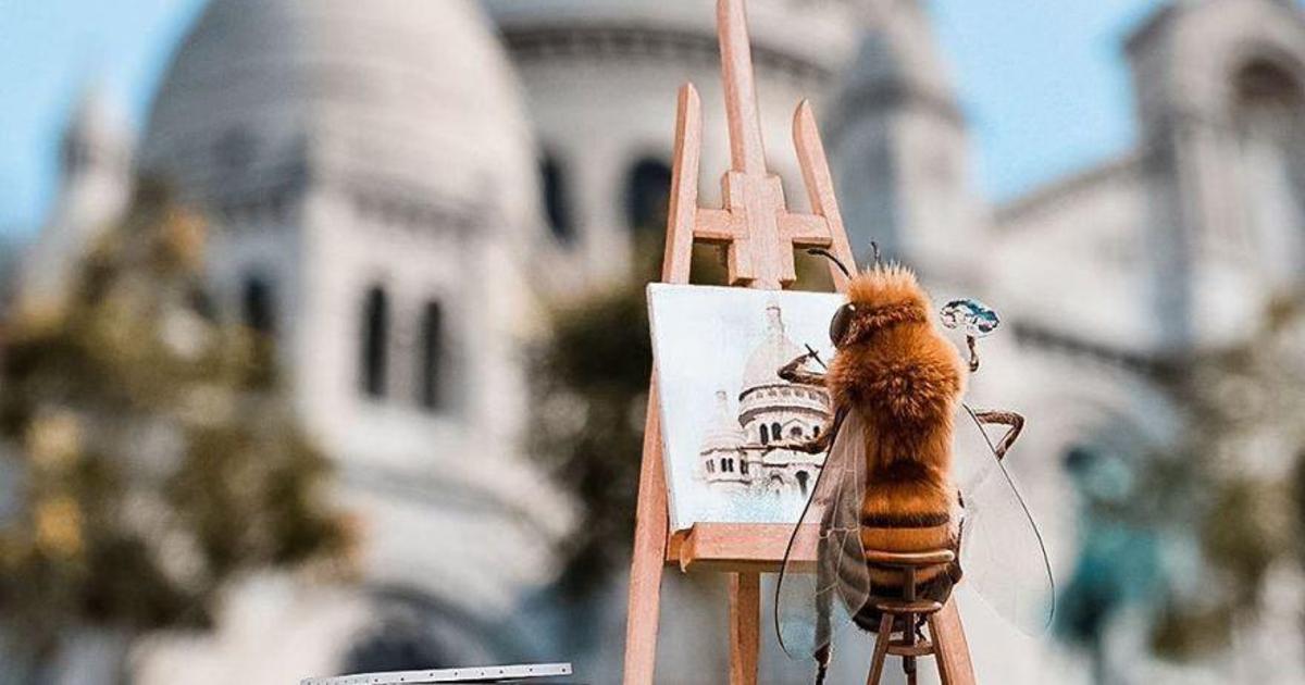 Первая пчела-инфлюенсер собирает средства для спасения пчел