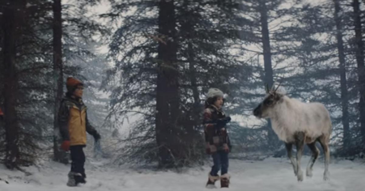 Air Canada помогла заблудшему оленю Санты вернуться домой