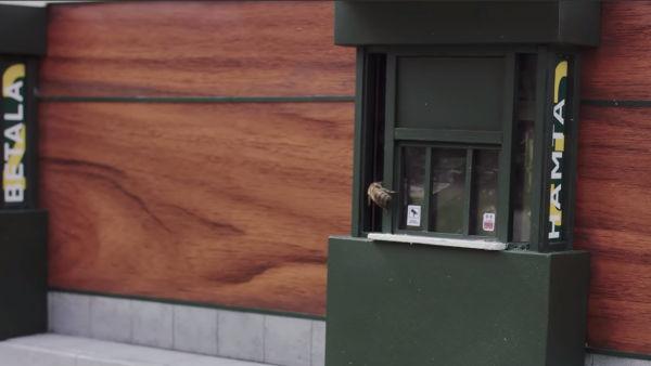 Швеции открылся McDonald's для пчел 3