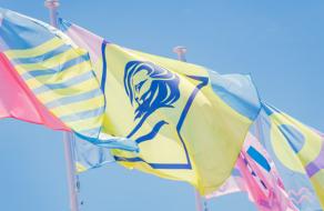 Фестиваль Cannes Lions отменили