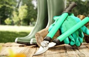 На OLX спрос на продукты и садовый инвентарь вырос почти в 3 раза