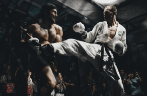 Pit Bull Fight приглашает бренды к партнерству