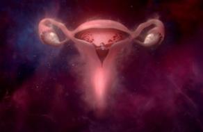 Libresse рассказала историю матки в новой кампании