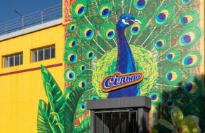 В Киеве открыли тематический супермаркет «Сільпо», посвященный Шри-Ланке