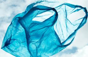 Walmart, Target и CVS пытаются найти замену пластиковым пакетам
