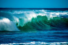 Нюансы хайпа: как понять, стоит ли подхватывать волну