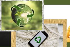 Курс на устойчивость в шаткие времена: зачем это бизнесу?