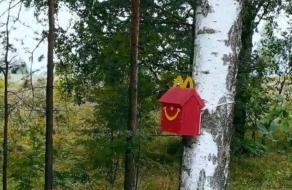 McDonald's создал скворечники в виде упаковок Хэппи Мил