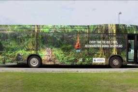 О скорости исчезновения животных рассказали с помощью автобуса