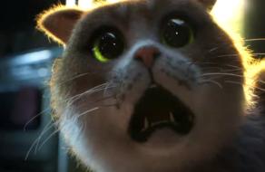 Mars Temptations выпустил фильм ужасов для котов