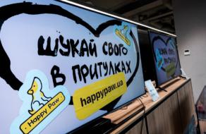 MOYO поддержали социальный проект фонда Happy Paw и призывают «искать своего в приютах»
