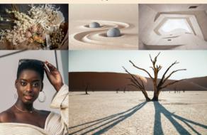 Shutterstock назвал топ-оттенки 2021 года