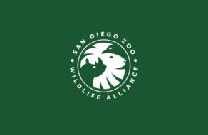 В новом логотипе зоопарка умно использовали негативное пространство