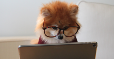 Зачем нужен блог на коммерческом сайте? 5 причин использовать инфотрафик