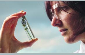 L'Oréal Україна анонсує старт четвертого сезону української премії L'Oréal-UNESCO «Для жінок у науці»