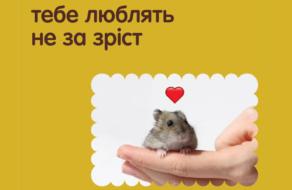 Реклама киевского зоопарка напомнила о безусловной любви
