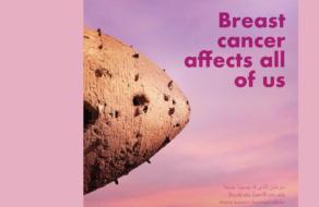 О проблеме рака молочной железы рассказали с помощью достопримечательностей