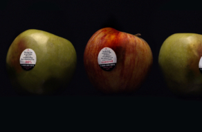 О проблеме домашнего насилия рассказали с помощью яблок